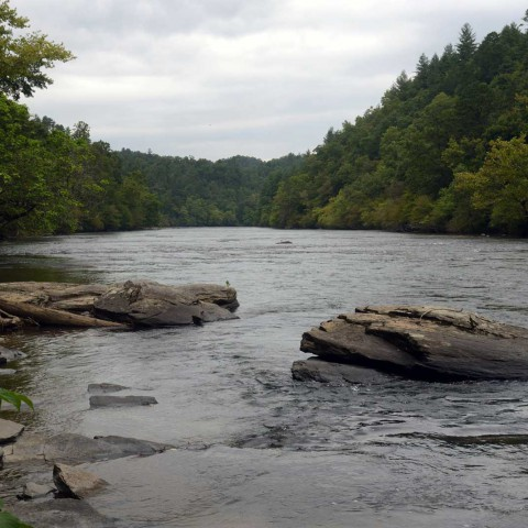 BPR News: How The Little Tennessee River Was Saved 25 Years Ago