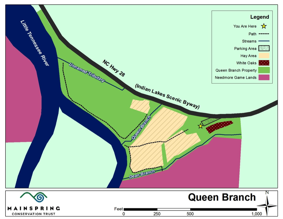 queen branch map