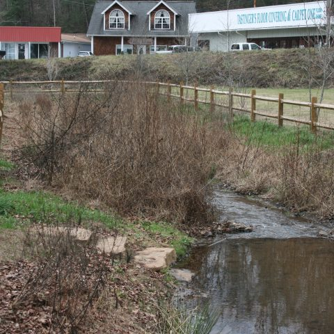 The Franklin Press: A Stream Saved