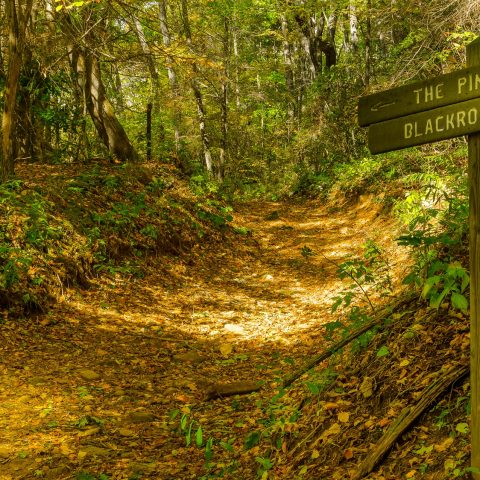 Smoky Mountain News: Reroute planned for Blackrock Trail