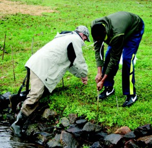 Jason Meador, with Mainspring Conversation Trust, works with a Franklin High student to plant dogwoods along Crawford Branch in November. (Photo from The Franklin Press)