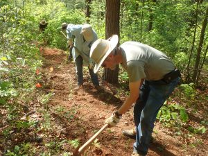 Volunteer Workday - Tessentee trail maintenance